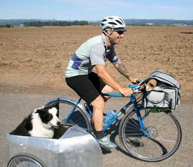 bicycle-sidecar-for-dogs-9a