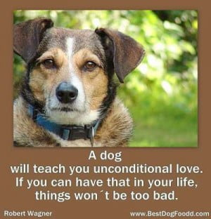 love-dog-poems